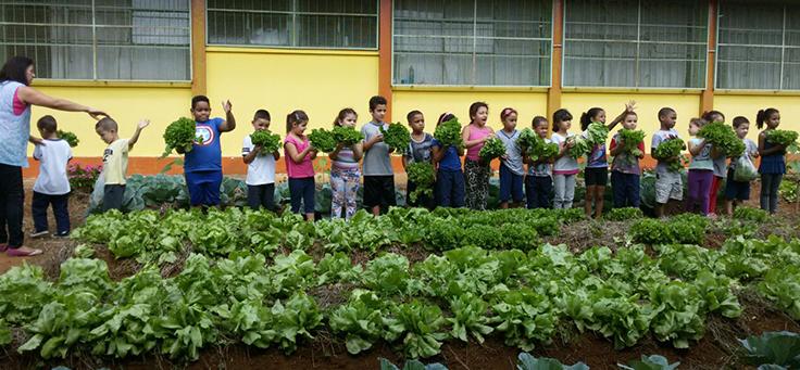 Crianças participam de projeto com hortas