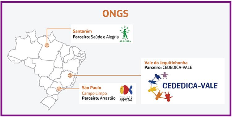 Formação em ONGs
