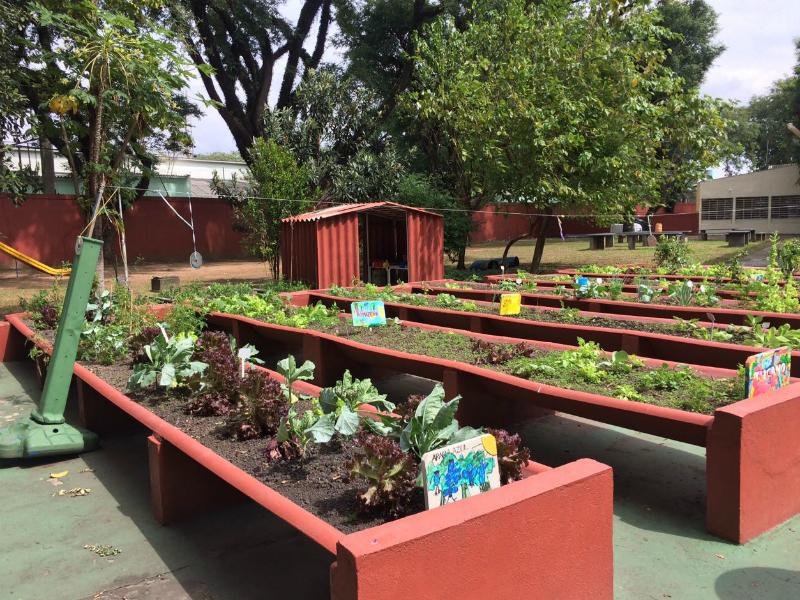 2017: A escola desenvolve projetos ligados à alimentação e conta com uma horta própria