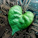 Vale a pena verde novo: apps ajudam a preservar o planeta e até barrar crimes ambientais
