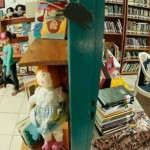 Biblioteca comunitária liderada por jovens faz sucesso na zona sul de SP