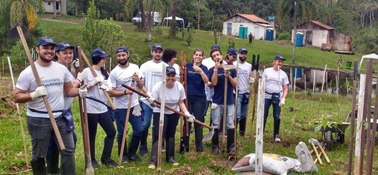 Voluntários trabalham em plantação de árvores