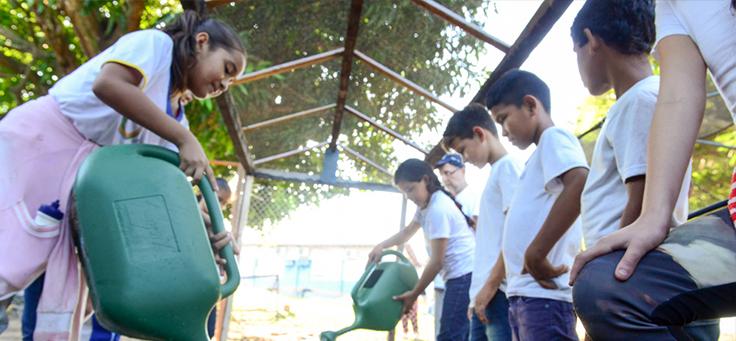 Crianças aparecem enfileiradas, em torno da horta da, regando as plantas na Escola Municipal Lili Benchimol