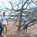 Escola pública de Sergipe vira inspiração pelo trabalho com meio ambiente