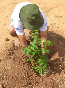 Imagem mostra estudante plantando na horta