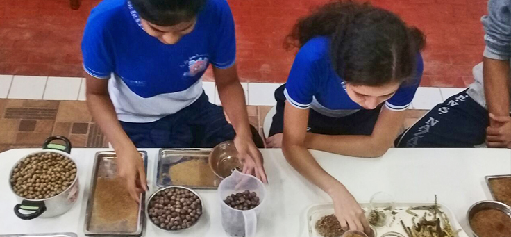 Alunos da Escola Estadual Nossa Senhora de Nazaré estão manipulando panelas com diferentes alimentos em laboratório ao ar livre, em Manacapuru (AM).